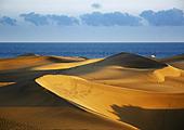 Jour 4 - Les dunes de Maspalomas
