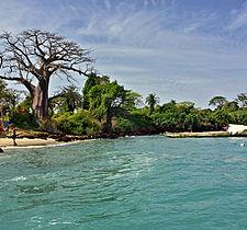 Voyage sur mesure - GuinéeBissau - Archipel des Bijagos ou l\\\'ultime jardin d\\\'Eden
