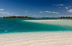 La fascinante des Caraïbes