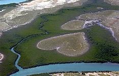 Grand Terre & Ile des Pins