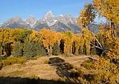 Jours 3 à 4 - Le Parc national Grand Teton