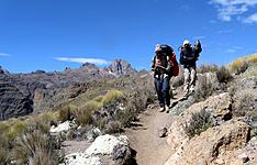 Ascension et trek au Mont Kenya et safari photo à Nakuru