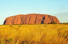Incontournables australiens