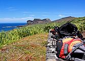 Randonnées sur les îles du triangle: Faial, Pico et Sao Jorge