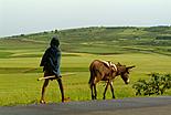 L\'Ethiopie en 2 semaines