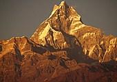 Jour 10 - Trek de Deurali (2100 m) à Landruk (1750 m)