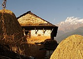 Jour 13 - Randonnée de Bhumdi à Pokhara via Shanti Stupa